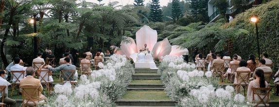 DP Wedding Decoration