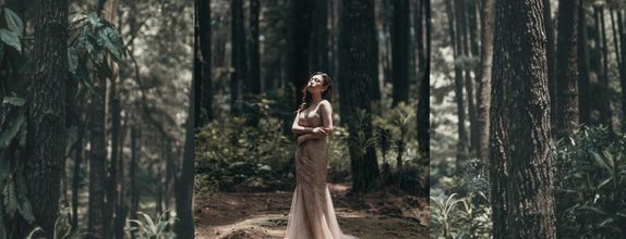 Single Pre-Wedding Gown