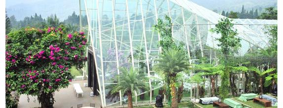 Paket Akad Nikah & Pemberkatan Amaryllis Boutique Resort