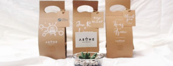 ABANE Succulent Signature Glass Package