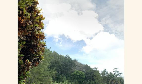 Borobudur International Golf