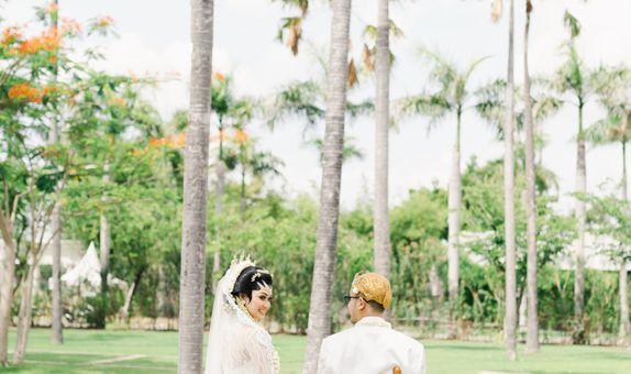 Adore Wedding Photo