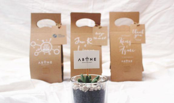 ABANE Succulent Signature Glass Planter