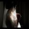 Paket pre wedding murah all in photo & video