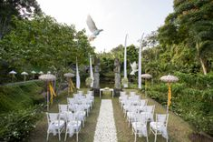 Launch Weddings-project