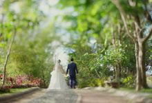 Niko & Lara Same Day Edit by QbetaStudios Wedding Films