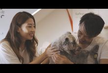 Weichin & Rebecca Pre-wedding MV by Spark A Light