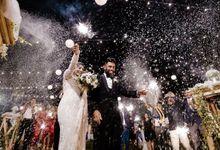 M I C H E L L E + C H A M A L K A by Lights and Magic | Sri Lankan Wedding Videographer