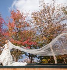 Seoul Destination Pre-Wedding - Mike & Cynthia by Back Alley Creations