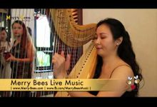 Harp Solo at Wedding Reception at Shangrila by Merry Bees Live Music