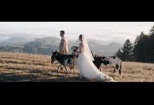 Redwood Forest California Wedding - Emily & Justin by Leura Film