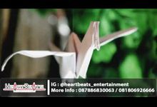 RATU & VINA by Heartbeats Entertainment