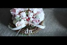 Darwin & Novi Same Day Edit Wedding Video by Kairos Works