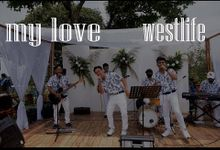 Wedding Of Ripal & Ridha by Ujpi Entertainment