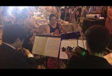 Wedding Reception by C Strings Music Ensemble