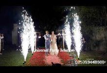 Wu Shiwei and Yin Xia Wedding by universal party solution