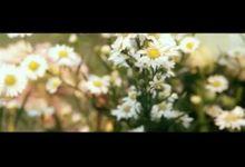 Wedding Clip Widya & Dhany by BEE Photo & Video