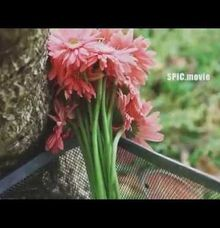 SPIC Wedding Trailer | Hermawan+Diana by Spic Movie