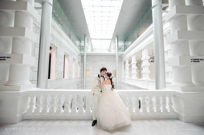 Victoria concert hall pre wedding pictures