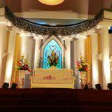 Edelweiss Wedding Decoration