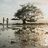 Nomu Photography