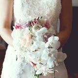Dearest Jolie Weddings