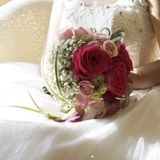 Amaryllis Floral Art