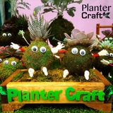 Planter Craft