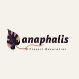 Anaphalis Project Decoration