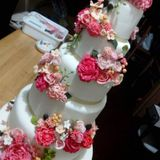 Belle's Cake Couture