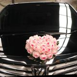 Bubu Wedding Car