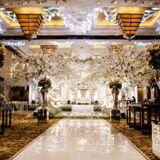 Pisilia Wedding Decoration