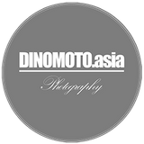 dinomoto.asia