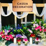 Cassia Decoration