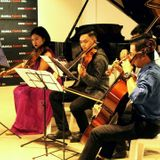 NFStringers Musicians