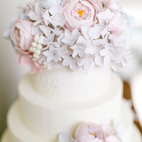 saga cakes