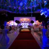 Ivylifia Decoration