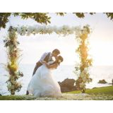 Bliss Wedding Design & Spectacular Events