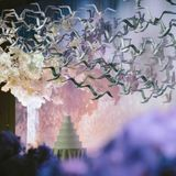 Heaven's Gift - Special Events Design and Consultancy