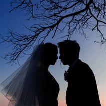 Daniel Baci Photography