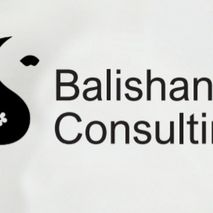 Balishanti Consulting