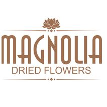 Magnolia Dried Flower