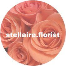 Stellaire Florist