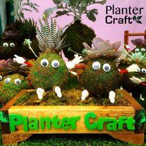Planter Craft