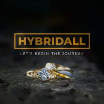 Hybridall Studio