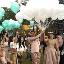 Darmawan Park Celebration Venue Collection