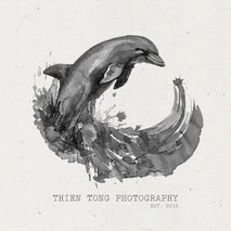 Thien Tong Photography