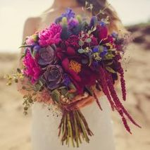 Wild Blossom Flowers