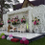 bonanza_wedding