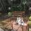 The Samaya Ubud, Bali